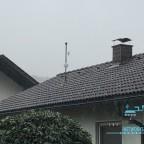 Haus NR2 als Richtfunk angebunden